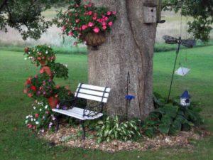 Цветы, растущие в тени – Весна в саду