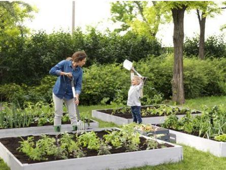 Обустроенные грядки – огород без хлопот