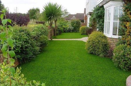 Как правильно посеять газон на участке, пошаговое руководство