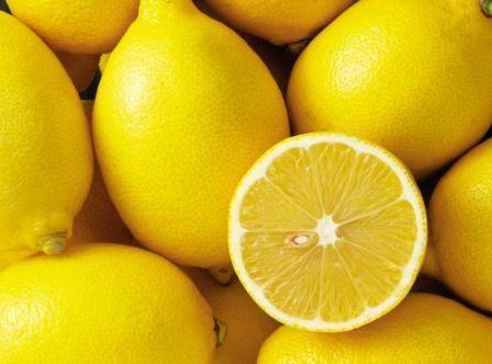 Как вырастить лимон из черенка в домашних условиях
